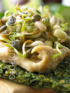Saf bread with sprouts